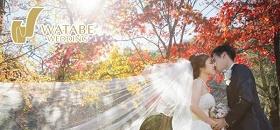 與京都拍攝紅葉婚照