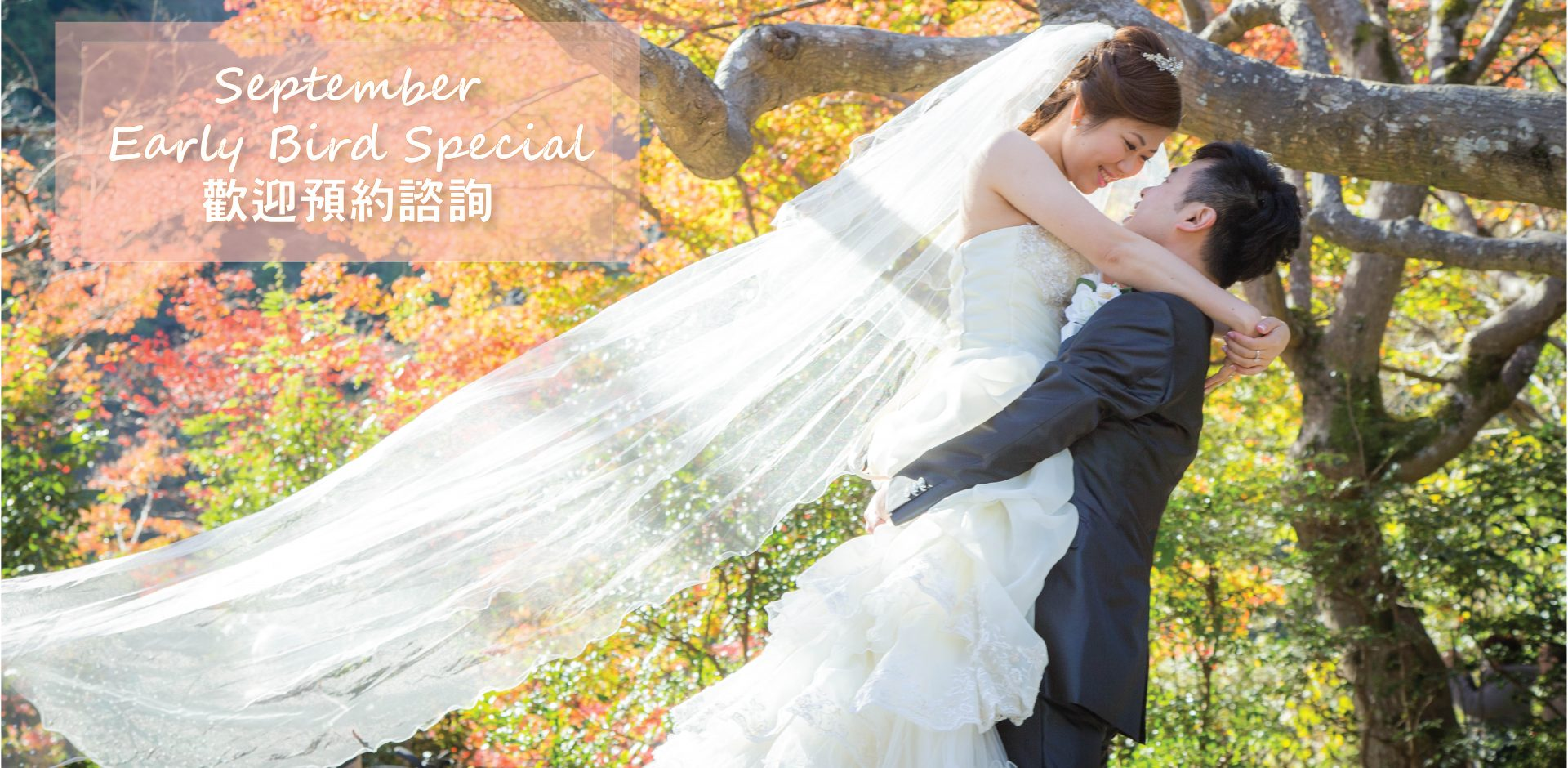Watabe Wedding 9月中秋早鳥優惠